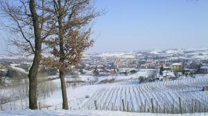 panorama Nizza con neve ESATTA_1920